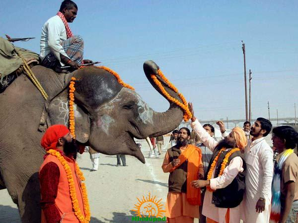 Adhus Performing Worship of an Elephant