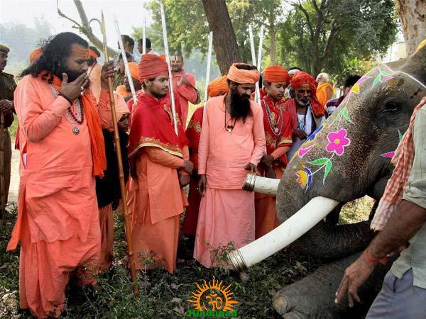 Juna Akhada Sadhus with Elephant at Maha Kumbha Mela 2013