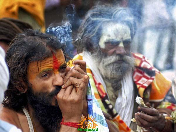 Sadhu smoking Chillum at Kumbha Mela Place
